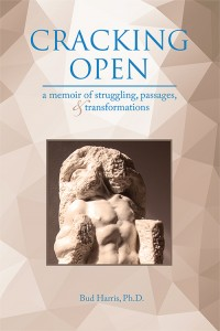 Into the Heart of the Feminine: An archetypal journey to renew strength, love and creativity